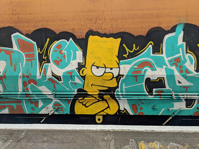 Bart Rides the Railtrack
