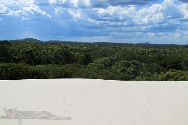Dark Point Aboriginal Place