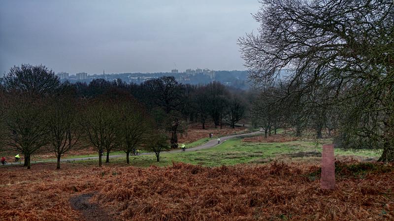 Richmond Park - Virtual Memorials - Covid