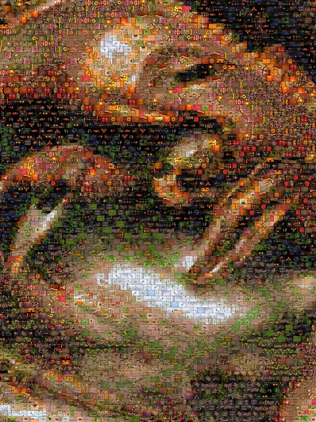 Buddha Head Photo Mosaic