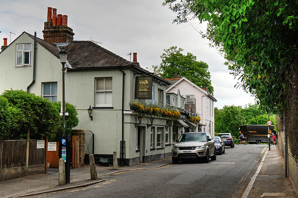 Fox and Grapes Pub - Wimbledon Common