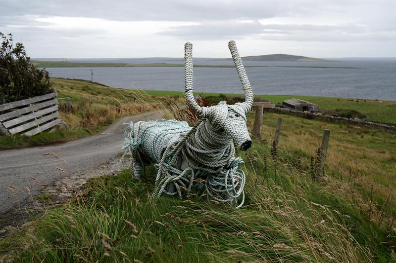 Rousay - Brinian - Sculpture - Cow