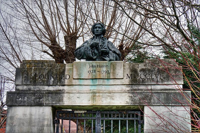 Bust of Surgeon John Hunter