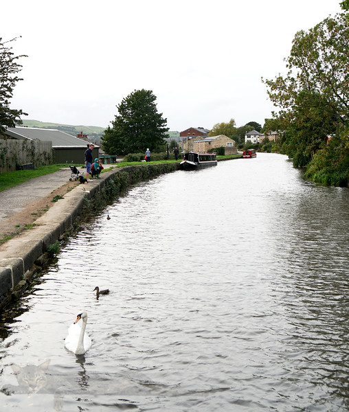The Canal at Riddlesden