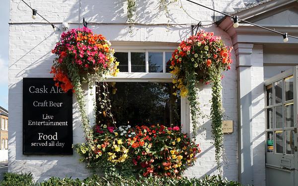 Swan Public House - Flowers