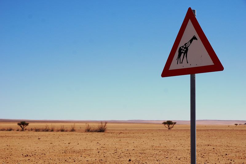 Animal Warning Road Sign - Namibia