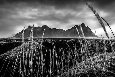 Vestrahorn, Iceland Photo Tour February 2017