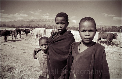 Cattle boys near Queenstown, South Africa 1987-1991