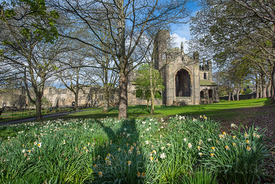 Spring, Kirkstall Abbey, Leeds West Yorkshire, United Kingdom.