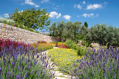 A colourful garden, near Pollenca, Majorca. June 2018