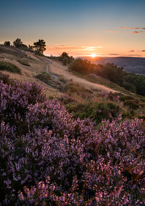 CHEVIN_SUNSET_66