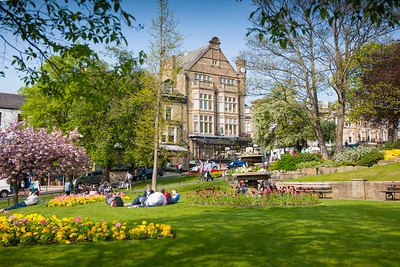 Bettys Cafe spring flowers t, Harrogate, North Yorkshire, United Kingdom