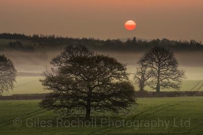 Sunrise: Woodall near Sheffield; Trees; sun; United Kingdom.