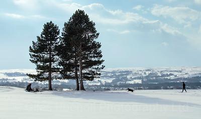 OTLEY_SNOW_FIELDS