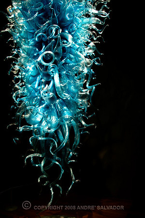 DALE CHIHULY - ARTIST, GLASS ART SCULPTOR