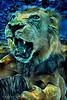 1667A-PE2  Hear Me Roar (A)