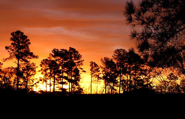 Sunrise over Good Call! Farm