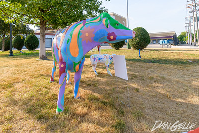 """First District Assn 100 years """"Downtown Cowtown"""""""