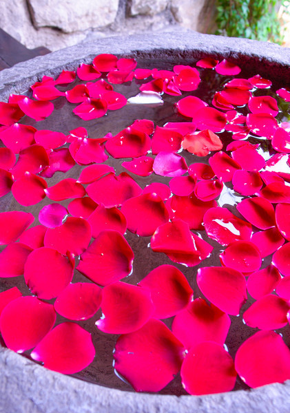Red Floating Petals
