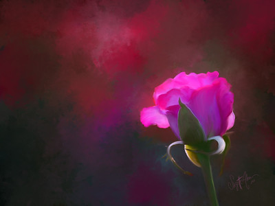 1-OIL-Standout Pink Painted Final