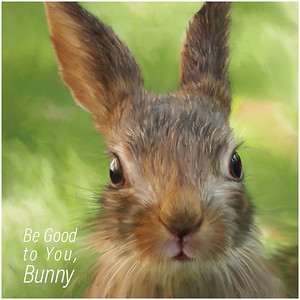 Be Good to You Bunny SQ1