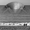 """Gamera on the beach"""