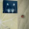 Print_book clamshells_prints_19