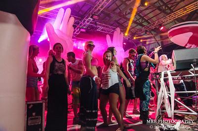 Summer Camp Music Festival 2014 - Girl Talk