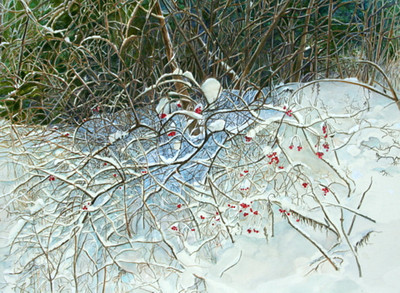 """ROSE HIPS IN WINTER"" watercolour"