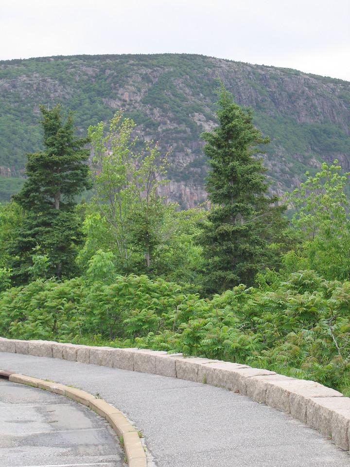 04 Loop Road and Sidewalk