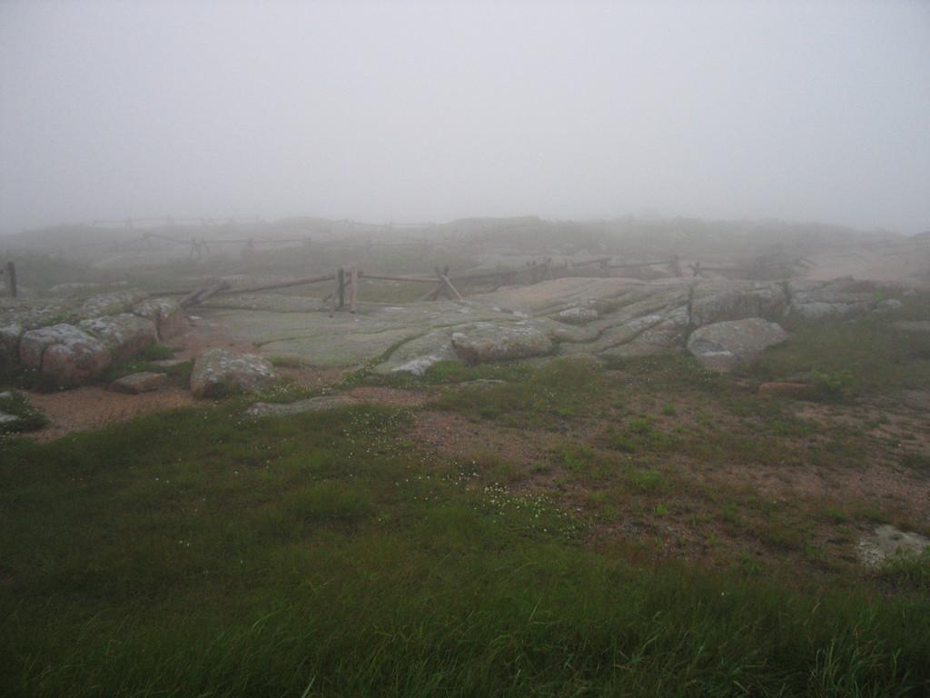 30 Split Rail Fences in the Mist