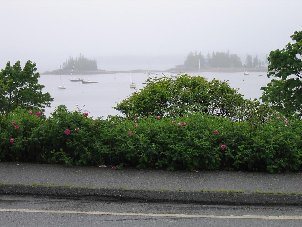 06 Seal Harbor and Sidewalk