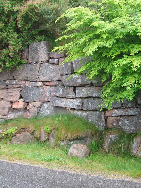 54 Rock Wall MS