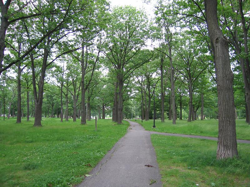 06 Narrow Path