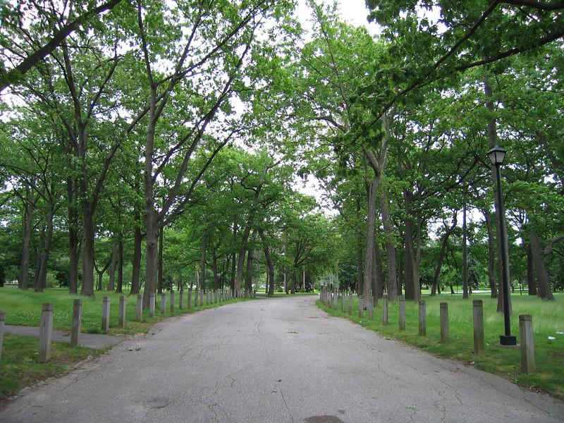 02 Deering Oaks Walk