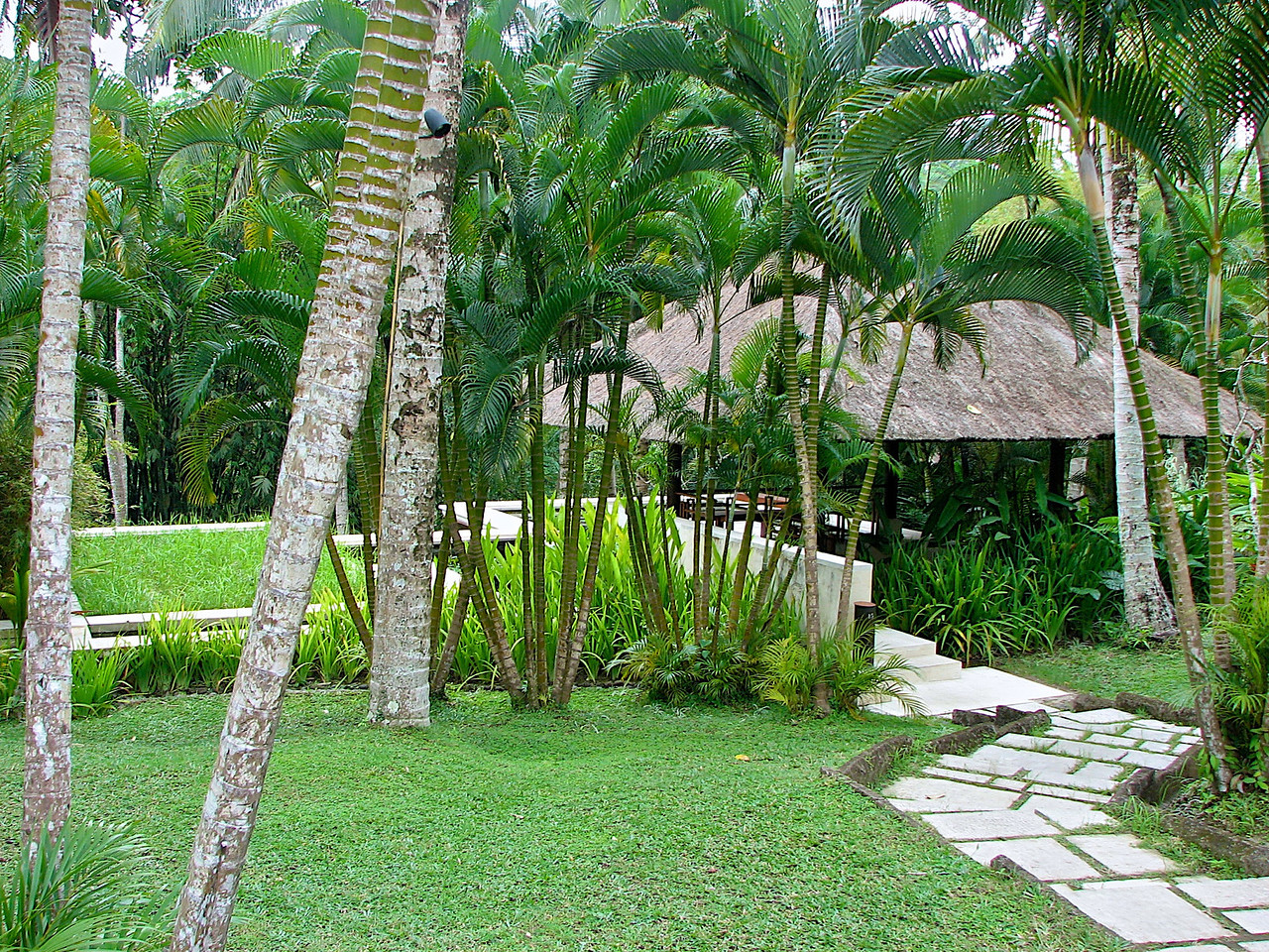 In addition to rooms in the main building, there are also villas throughout the property.