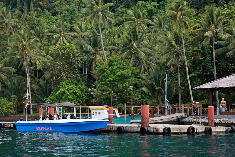 The resort has 3 boats for dives each day and if needed, can get other boats as well.  About 8 people go in each boat.