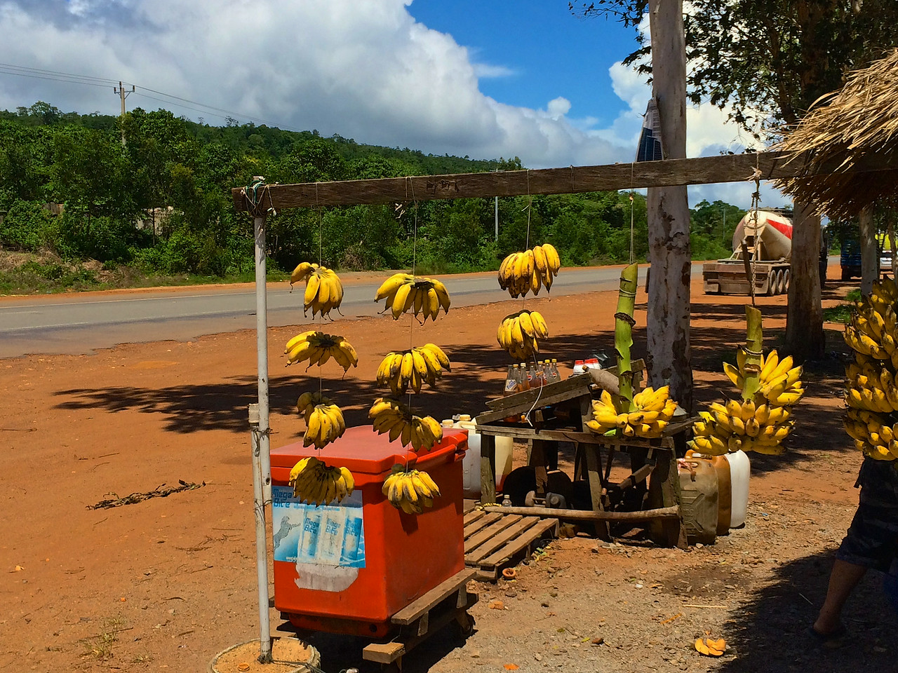 Fresh bananas are available in the parking lot.