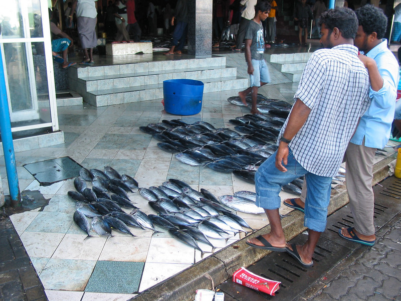 Not only is the fish right outside the market on the sidewalk...