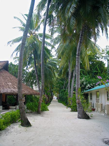 Large sand pathways lead to villas spread around the island.