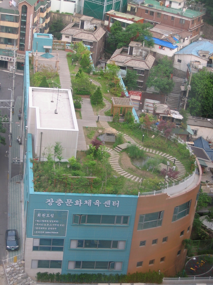 Rooftop gardens are popular in Seoul.
