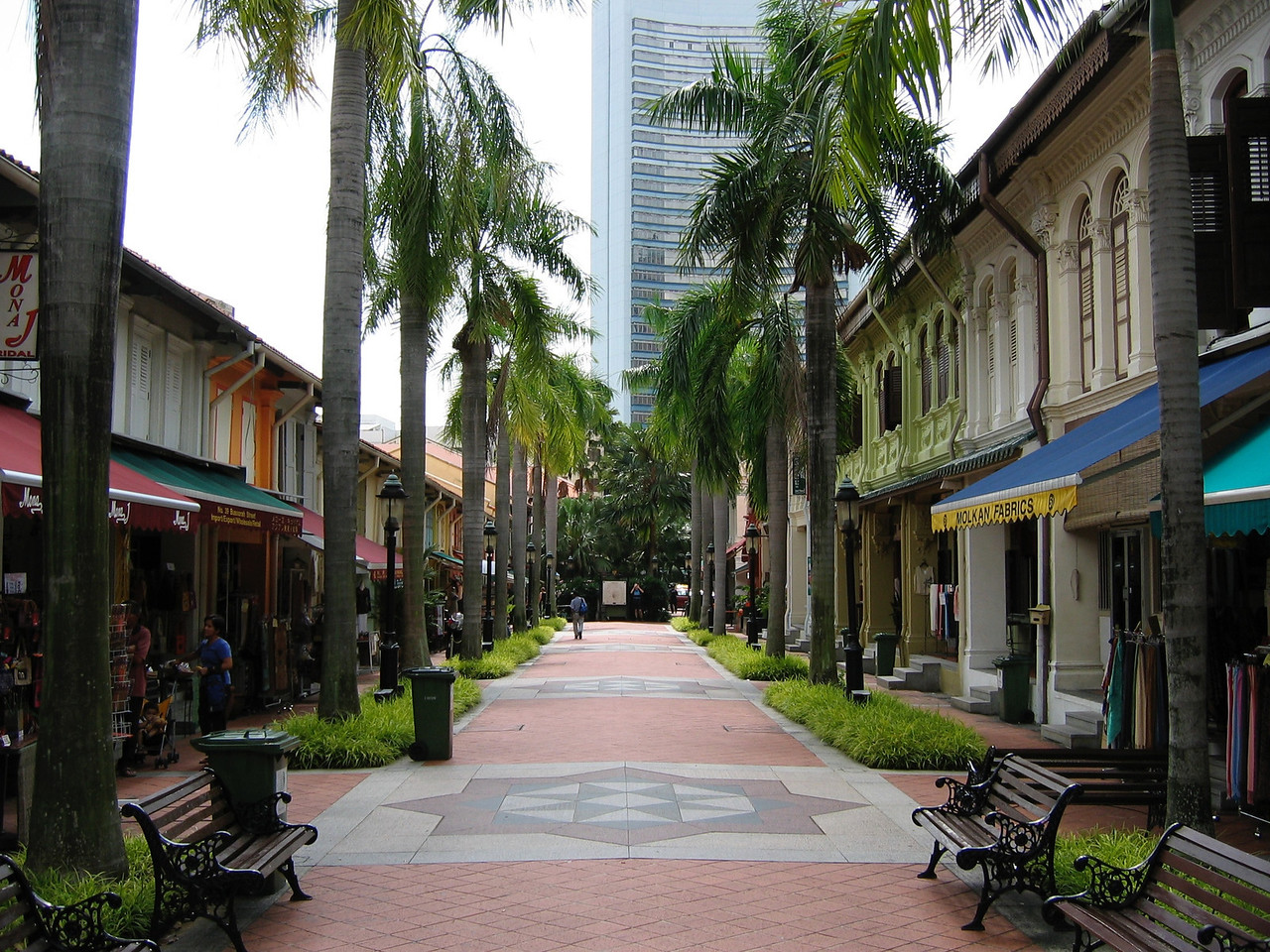Arab Street is another shopping district right outside the Sultan Mosque.
