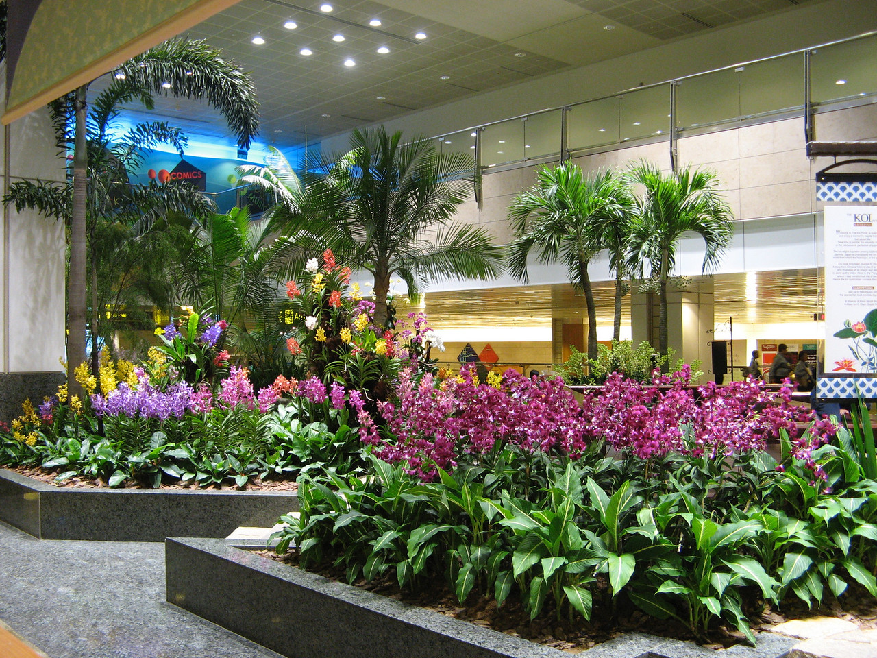 There are many gardens throughout the inside of the Singapore airport.