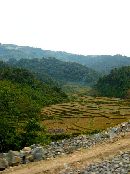 Lai Chau is situated in a high mountainous region in Northwest Vietnam, north of the Da River. Its neighbors are Yunna (China) on the north, Laos on the west.