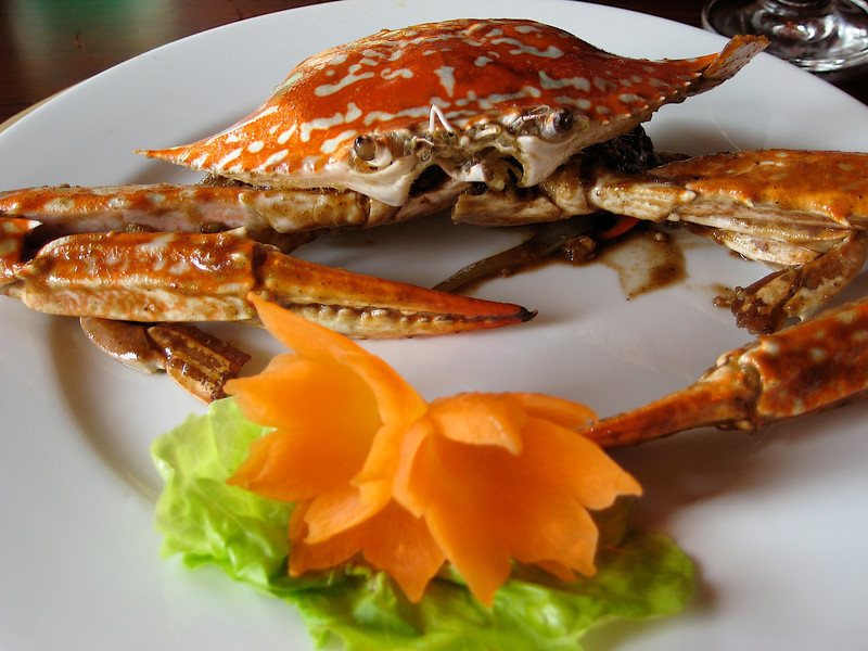 This crab looks tasty…or he's just looking at us.