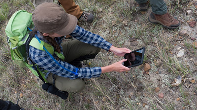 Teri Ness takes a photo of a horned lizard during a transect training. PHOTO BY MIKE QUIST KAUTZ