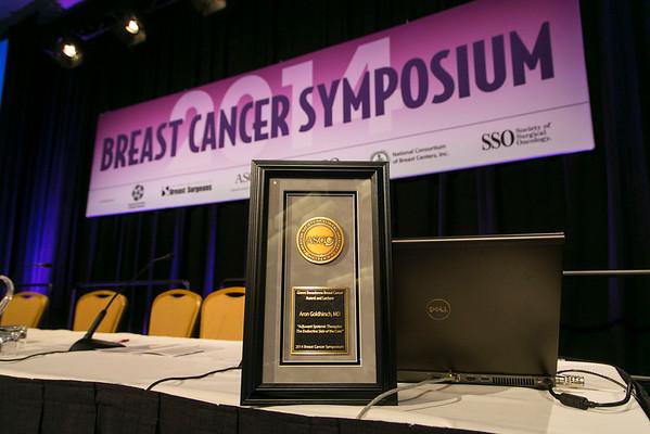 Gianni Bonadonna Breast Cancer Award at the 2014 Breast Cancer Symposium