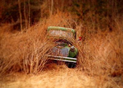 Forgotten Truck