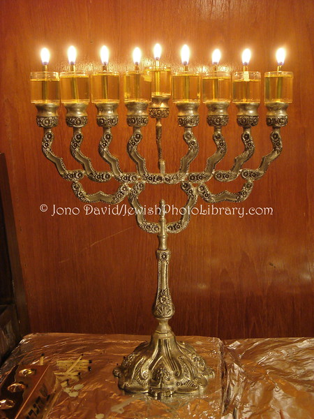 JP-D 154  Hanukkah Party, Ohel Shelomo Synagogue  KOBE, JAPAN