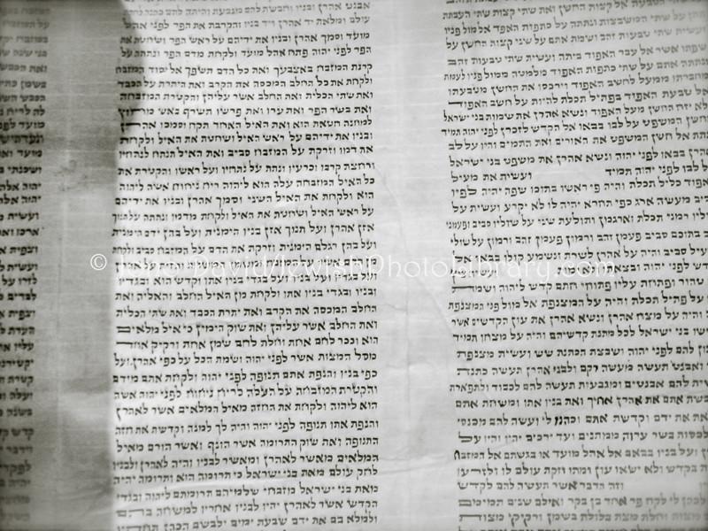 TW 5  Torah detail